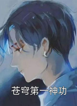 苍穹第一神功小说
