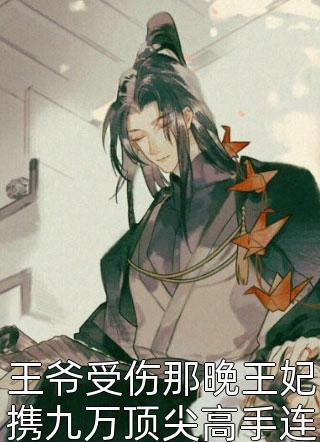 王爷受伤那晚王妃携九万顶尖高手连夜赶往边关灭敌国小说