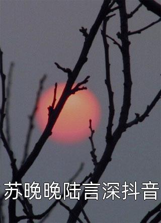 苏晚晚陆言深抖音小说