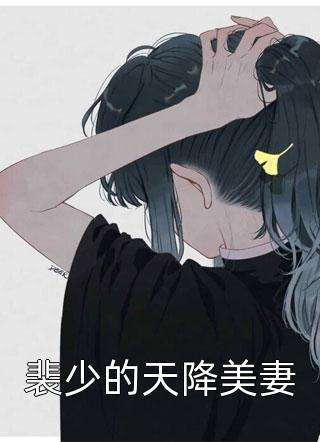 裴少的天降美妻小说