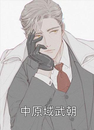 中原域武朝小说