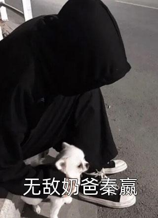 无敌奶爸秦嬴小说