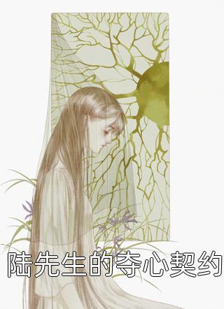 陆先生的夺心契约小说