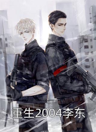 重生2004李东小说