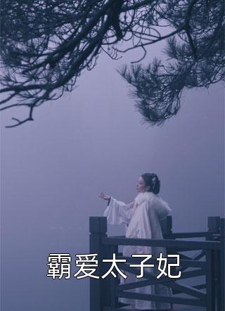 霸爱太子妃小说