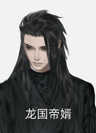 龙国帝婿小说
