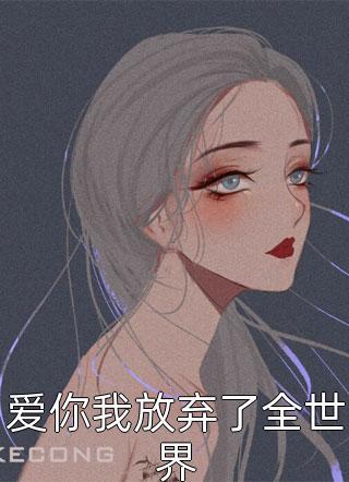 爱你我放弃了全世界小说