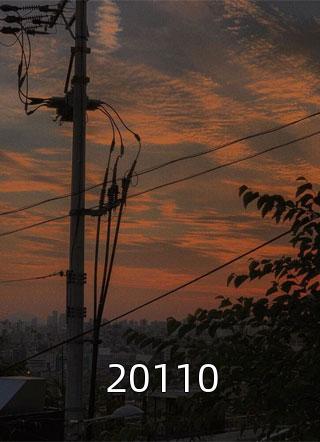 20110小说