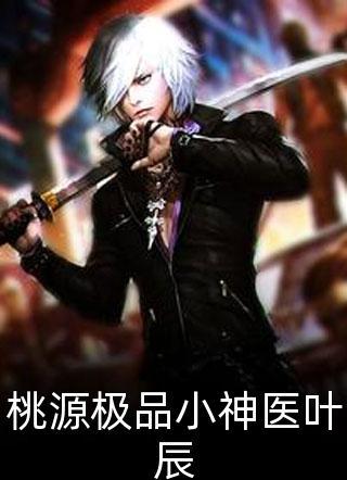 桃源极品小神医叶辰小说