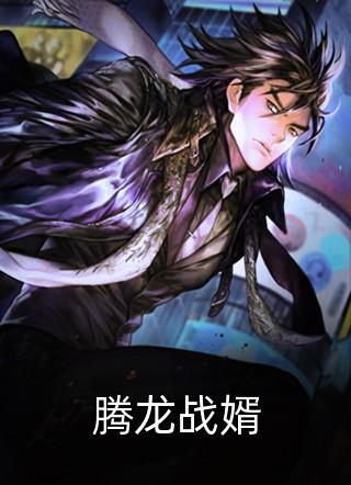 腾龙战婿小说