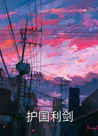 护国利剑小说