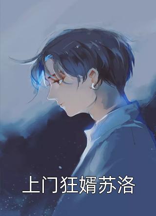 上门狂婿苏洛小说