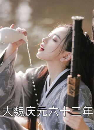 大魏庆元六十三年小说